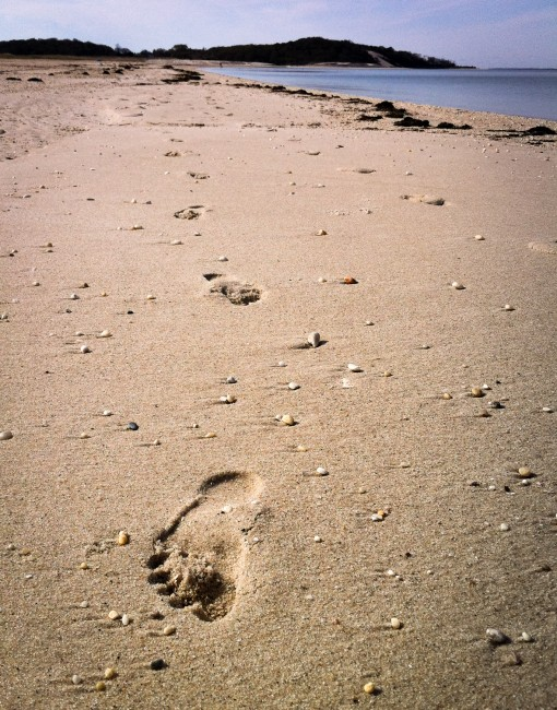 Footprint after barefoot running on the beach in Long Island